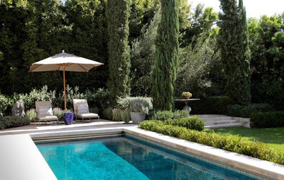 The Perfect Poolside Landscape
