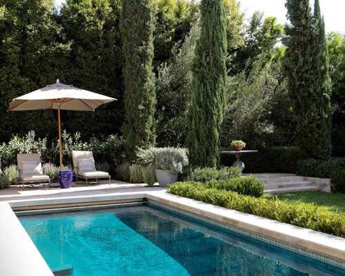 Best italian cypress tree ideas design ideas remodel for Italian pool design 7