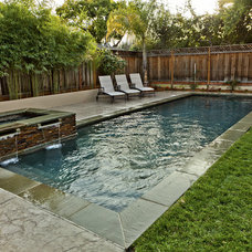 Contemporary Pool by Aesthetic Gardens