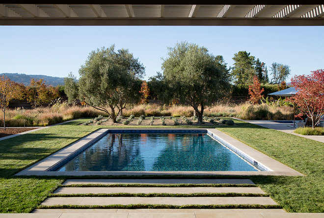 Transitional Pool by Andrew Mann Architecture