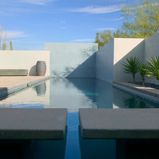 Modern Pool by Ibarra Rosano Design Architects