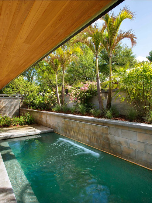 Midcentury pool design ideas remodels photos for Pool landscaping images