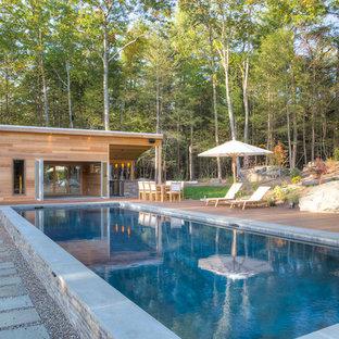 Woodland Swimming Pool Paradise