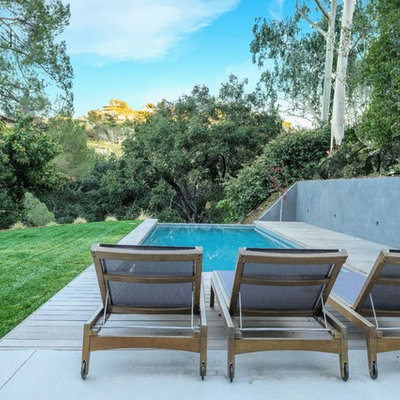 Example of a large trendy backyard concrete and rectangular lap pool design in Los Angeles