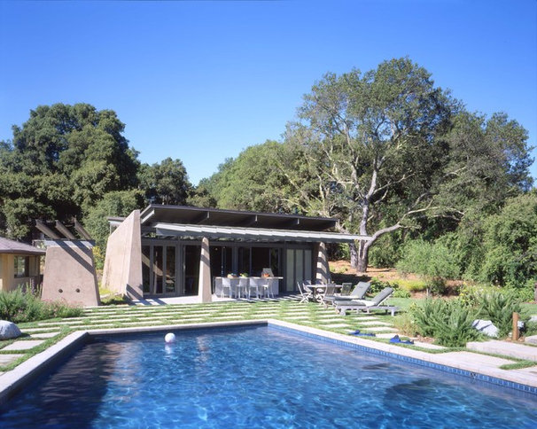 Contemporary Pool by Dan Phipps Architects