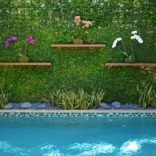 Contemporary Pool by Lewis Aqüi Landscape + Architectural Design
