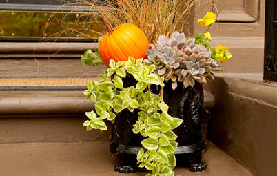 10 Standout Fall Container Gardens With Extra Seasonal Pizazz