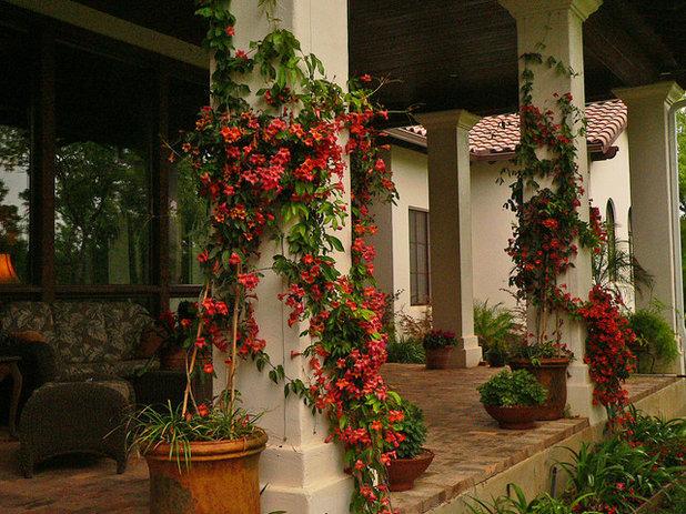 Mediterranean Porch by JOHN DANCEY Custom Designing/Remodeling/Building