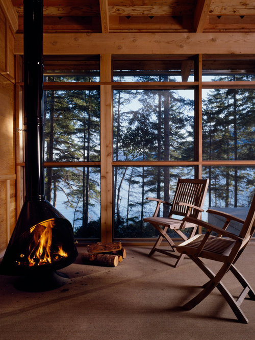 Exposed flue fireplace houzz for Wood burning stove for screened porch