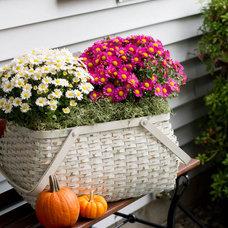 Porch by Rikki Snyder