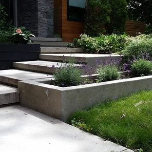 Modelo de terraza minimalista, de tamaño medio, en patio delantero, con suelo de hormigón estampado