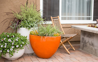 How to Help Your Garden Survive a Heat Wave