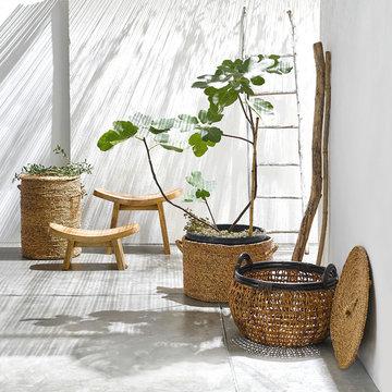 Jardin d'intérieur