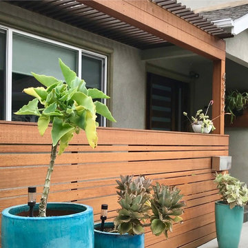 New pergola and fenced porch entry with Kalanchoe container garden entry.