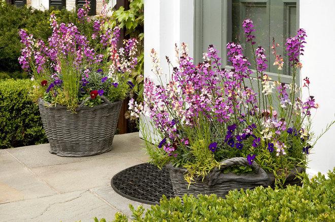 Traditional Porch by Craig Bergmann Landscape Design