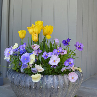 Foto di un portico davanti casa con un giardino in vaso, pavimentazioni in pietra naturale e un tetto a sbalzo