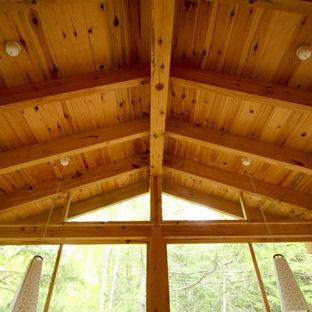 Ispirazione per un portico american style di medie dimensioni e nel cortile laterale con un portico chiuso e un tetto a sbalzo