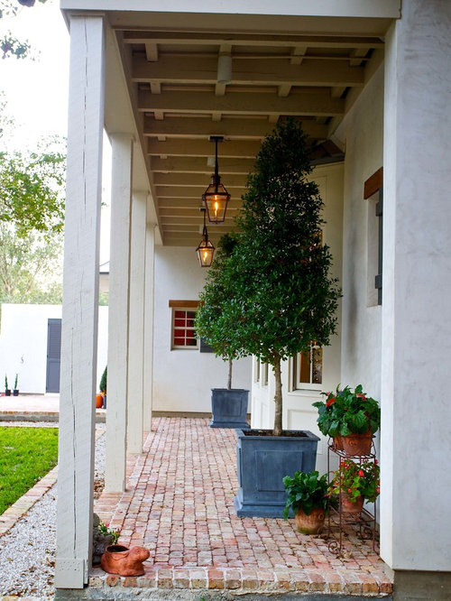 Trees In Pots Houzz