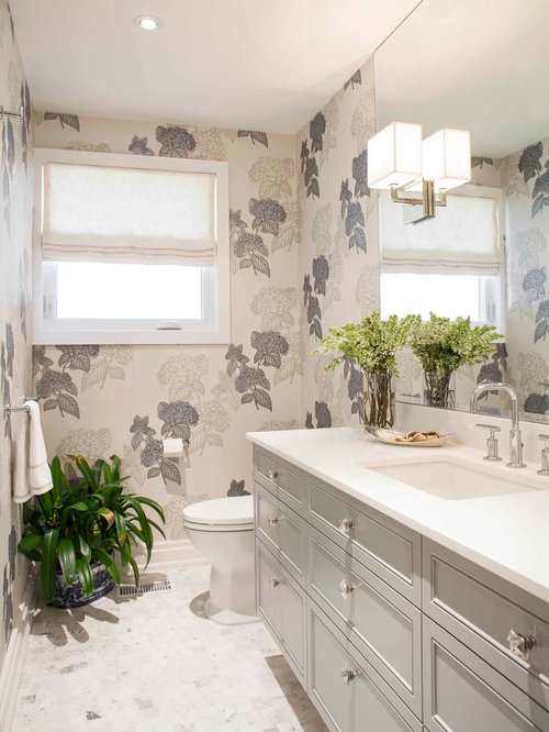 Mid Sized Transitional Powder Room Photo In Toronto With Recessed Panel Cabinets Gray
