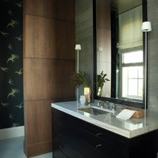 Contemporary Powder Room by Elizabeth Martin Design