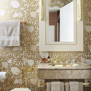 Example of a transitional powder room design in Chicago