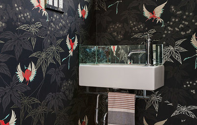 Room of the Day: Drab Toilet Closet Now a Dramatic Powder Room