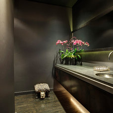 Contemporary Powder Room by Hage Creative