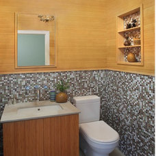 Contemporary Powder Room by Eisner Design LLC