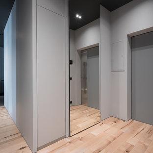 Неиссякаемый источник вдохновения для домашнего уюта: входная дверь в современном стиле с серыми стенами, одностворчатой входной дверью, серой входной дверью и бежевым полом