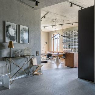 Idee per un ingresso industriale con pareti grigie, pavimento grigio, una porta singola e una porta grigia