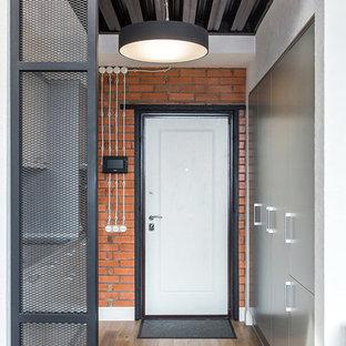 Выдающиеся фото от архитекторов и дизайнеров интерьера: входная дверь в стиле лофт с коричневыми стенами, паркетным полом среднего тона, одностворчатой входной дверью и белой входной дверью