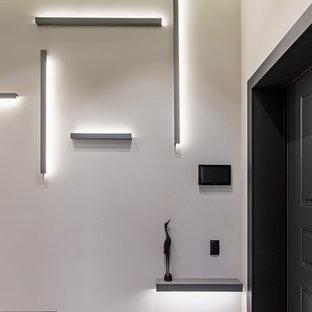 Свежая идея для дизайна: прихожая в современном стиле с белыми стенами, одностворчатой входной дверью, черной входной дверью и серым полом - отличное фото интерьера