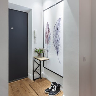 Inspiration for a small contemporary laminate floor entryway remodel in Yekaterinburg with white walls and a black front door