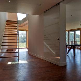 Idéer för stora funkis hallar, med vita väggar, mellanmörkt trägolv och brunt golv