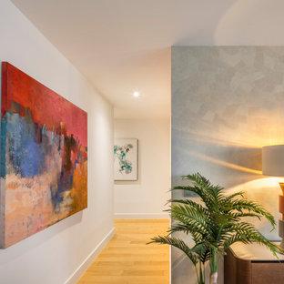 アリカンテの中くらいのコンテンポラリースタイルのおしゃれな廊下 (無垢フローリング、壁紙) の写真