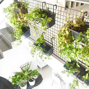 Crear un jardín interior en casa