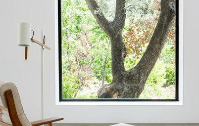 Ventanas seguras: Precios y tipos de vidrio para proteger tu casa