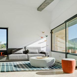 他の地域の中サイズのコンテンポラリースタイルのおしゃれな独立型ファミリールーム (白い壁、コンクリートの床、壁掛け型テレビ、暖炉なし) の写真