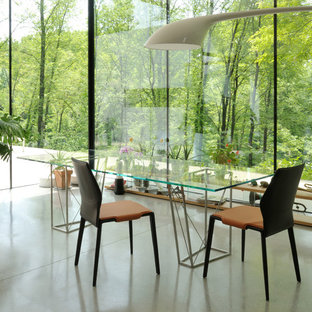 Example of a large trendy concrete floor dining room design in Other