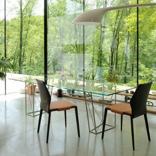 Foto di una grande sala da pranzo contemporanea con pavimento in cemento