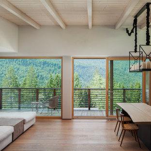 Esempio di una sala da pranzo minimalista con pavimento in legno massello medio, pareti grigie e pavimento marrone