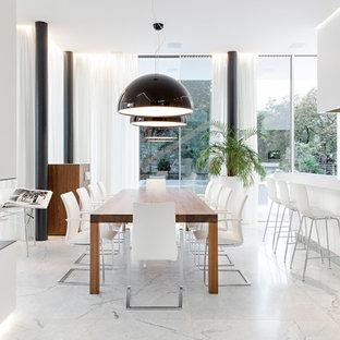 Foto di una grande sala da pranzo minimal con pavimento in marmo, cornice del camino in intonaco e camino bifacciale