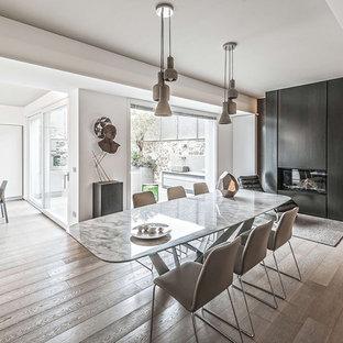 Esempio di un'ampia sala da pranzo aperta verso il soggiorno minimal con pareti bianche, parquet chiaro, camino lineare Ribbon e cornice del camino in metallo