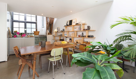 My Houzz: A Light-filled Live-work Space in a Former Factory