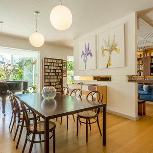 Immagine di una grande sala da pranzo design con pavimento in legno massello medio, pareti bianche e pavimento marrone