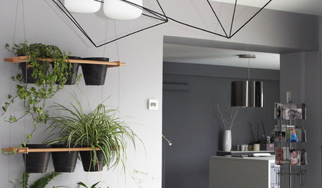 10 Style-Boosting Design Ideas for Your Indoor Plants