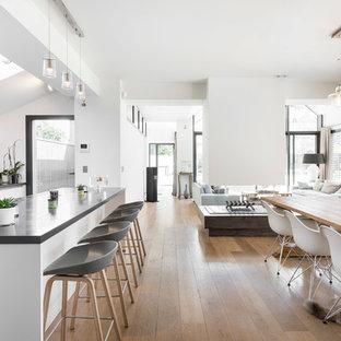Cette image montre une salle à manger ouverte sur le salon design de taille moyenne avec un mur blanc, un sol en bois clair et une cheminée double-face.