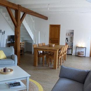 Exemple d'une salle de séjour scandinave.