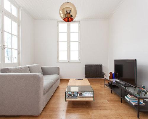 Salle de séjour moderne : Photos et idées déco de salles de séjour