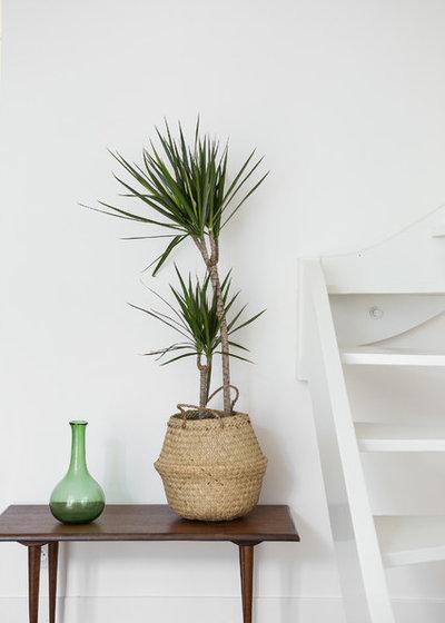 Contemporain Salle de Séjour by Frédérique Misdariis - Home Staging Experts